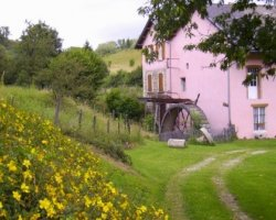 Le Moulin Rose