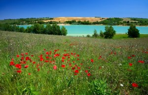 Camping Le Cathare